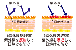 反射と吸収